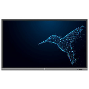 """Monitor AVTek TouchScreen 5 LITE 65 1ATB32 - 65"""", 3840x2160 (4K), TN, 6 ms, dotykowy - zdjęcie 1"""